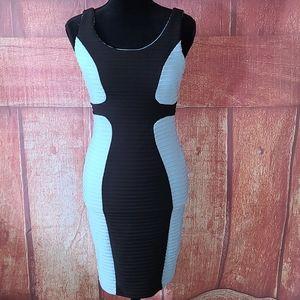 Jax Bodycon stretch dress